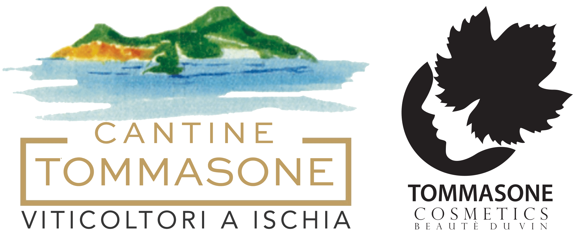 logo-tommasone